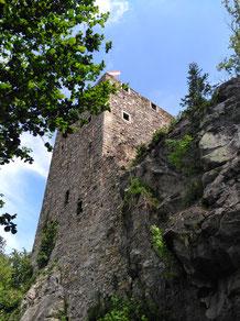 Ruine Haichenbach - Schlögener Schlinge
