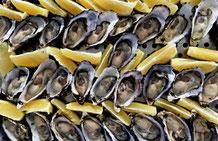 Frische Austern begleitet von aromatischen Zitronenschnitzen