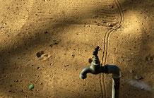 Als Grössenvergleich der Spurbreite dient der Wasserhahn in meinem Garten