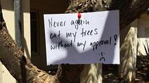 Nie mehr, mein Schneiderling, mach dich an meinen Bäumen zu schaffen!
