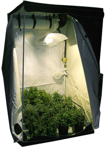 Growbox / Homebox für den Cannabis Hanfanbau Indoor