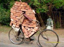 Das Fahrrad ein Allerweltsding
