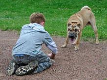 Le langage canin de l'enfant