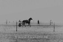 2014-07 Duhner Wattrennen