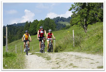 Ferienappartement Kessl, Allgäu, Oberstaufen Steibis, Radtour, Rad fahren