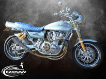 カスタムペイントバイク、リキッドシルバーでレインボー塗装されたカワサキZ900の全体写真