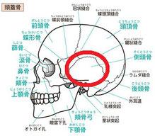 側頭骨のゆがみ