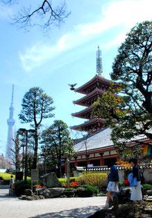 「新旧の塔」 浅草  2016/3/18