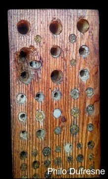 Nisthilfen Insektennisthilfen Insektenhotel Vogelschutz Specht Spechtschaden Aufgehackte Gänge