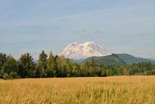 Mietwagenreise Mt. Rainier
