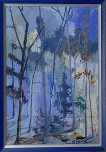 Nr. 2002;  Winterliche Nebel-Licht-Stimmung im Wald
