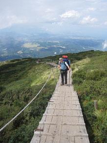 山頂手前の木道