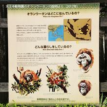 天王寺動物園の説明(2017年)