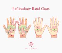手の反射区図