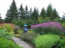 Aménager un jardin de médicinales - Ecole des Herbes, herboristerie ...