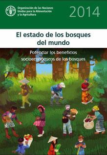 Publicación de la Organización de las Naciones Unidas para la Alimentación y la Agricultura (FAO)