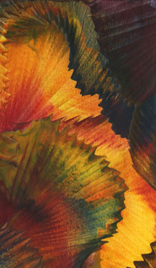 Autumn Foliage - Encaustic Wax Painting - by Anne Berendt