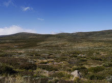 Das Altiplano Victorias