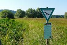 Offenlandbereich im NSG Hochholz-Kapellenbruch, Foto: A. Treffer