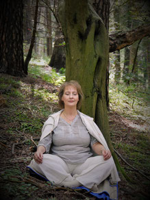 Meditation im Wald