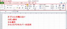 Excel 2010 の画面(クリックで拡大)