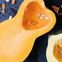 3 Squashes Perfect for Fall