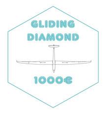 """DIAMOND : Pack """"GLIDING PLATINIUM"""" + Logo de votre Entreprise présent sur le planeur, sa remorque, et dans ma vidéo annuelle"""