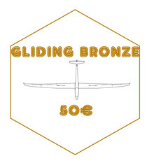 "BRONZE : Pack ""GLIDING IVORY"" + Photo dédicacée"