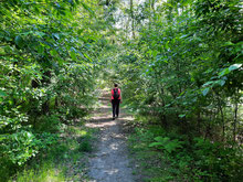 Bild:Wandern mit Martina Thies