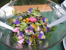 Blüten-Salat www.kraeuter-entdecken.de