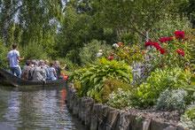 Somme Groupes - Séjour - Journée - Agence de Voyages - Amiens - Groupes - Somme - Amiénois - Hortillonages - Nature - Jardins - Plantes - Eau - Barques - Découverte - Patrimoine - Culture - Guide - Jardins flottants - Centre ville