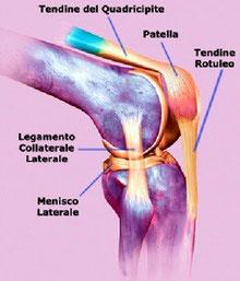 Terapia ad onde d'urto per la tendinopatia del rotuleo
