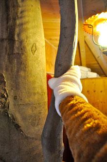"""Der """"Bausparfuchs"""" im Baumhaushotel, Link zum Blogeintrag vom 11.02.2011."""