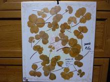色紙の表: 葉っぱが黄色に変色