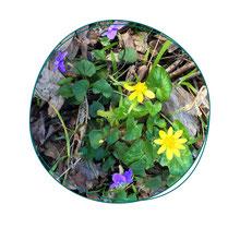 Formation de jardinage à Paris - Votre coach jardin vous apprendra à connaitre votre sol