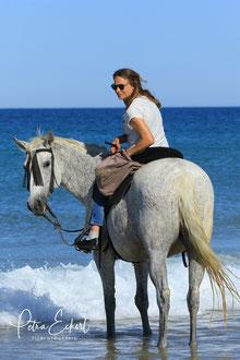 Reiterferien Andalusien Conil Reiturlaub Reitferien Reiterurlaub Reiten Pferde Spanien Andalusien Rudolf G. Binding Reitvorschriften für eine Geliebte