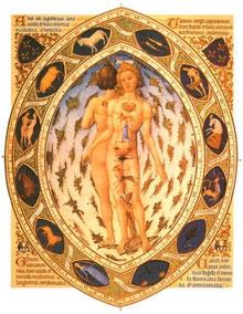 Cours Astrologie 3ème Niveau