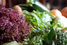オーガニック 無農薬 野菜セット