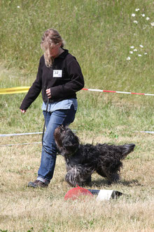 Caatje beim Rally Obedience