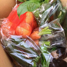 有機 野菜 無農薬