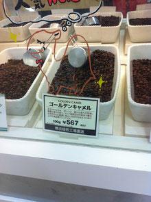 結局、この豆に戻ってしまいます。
