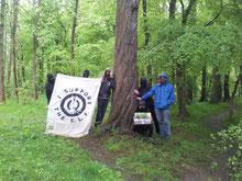 03. Mai 2015 Hambacher Forst