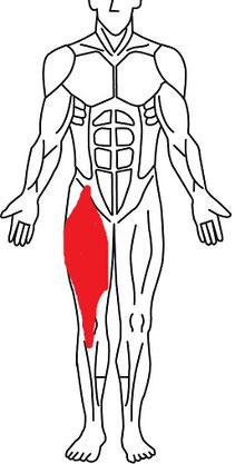 立ち上がる時の腰痛の原因