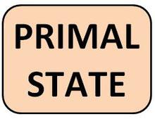 PRIMAL STATE KETOGENE ERNÄHRUNG