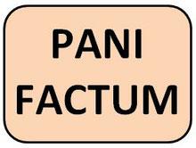 PANIFACTUM BROT KUCHEN KETO