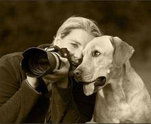 Hundefotografie Steffi Gädke: Wunderschöne Fotos. Viele davon finden Sie auf meiner gesamten HP und in der Galerie