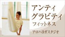 アンチグラビティ(アンティグラビティ)の詳細ページへのリンク。名古屋、一宮のアロハヨガ