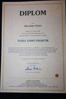 Mein Diplom
