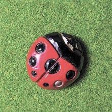 天道虫/ゴルフキャップにチョコンと