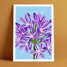 flower illustrated art print